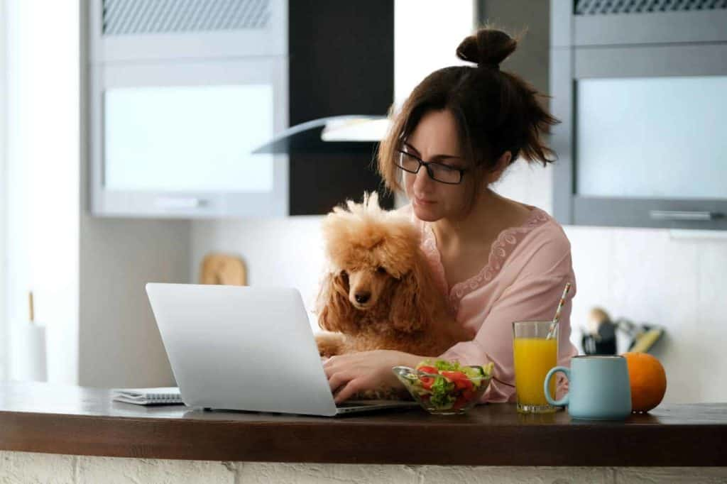 image of a woman working at home with her dog
